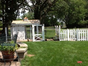 Chicken_Coop_June_2013
