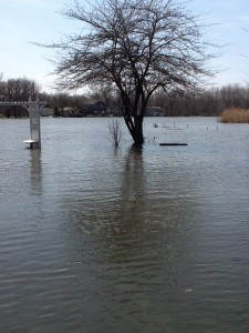 Flood 4.21.2013