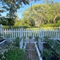 Vegetable Garden with Plants in early June. There is a very pretty arch arbor between two raised beds