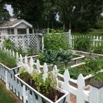 Planning my Gardens