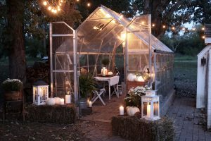 Fall Entertaining Greenhouse