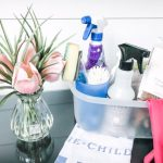 30 Day Cleaning & Organizing Challenge –