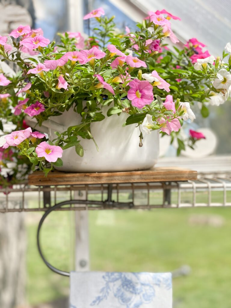 How to Make Your Outdoor Living Space Inviting for the Summer
