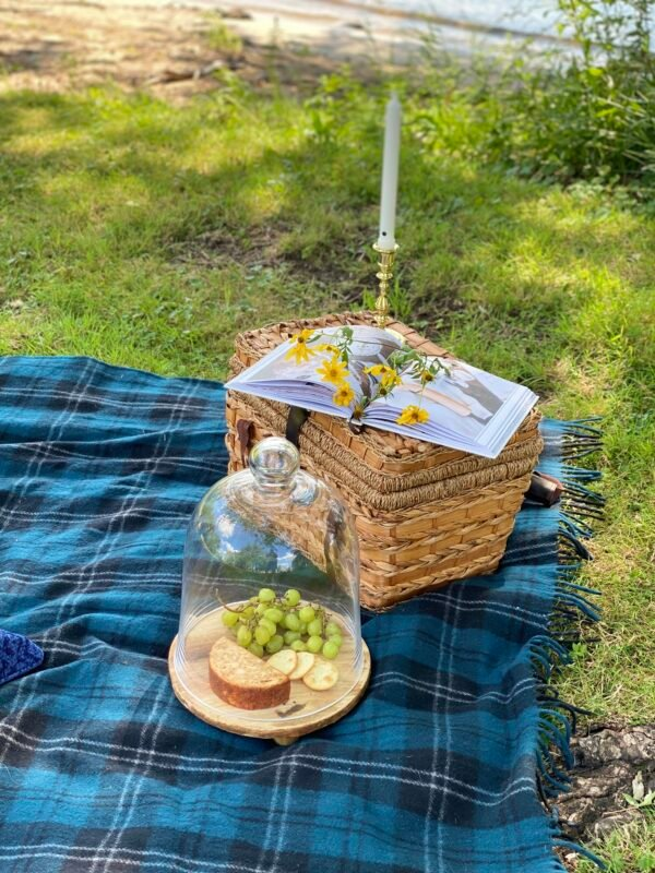 Blue and Black plaid blanket with picnic basket. On the picnic basket is a book, flowers and a candle. Next to the basket is a wooden board with cheese, crackers and grapes