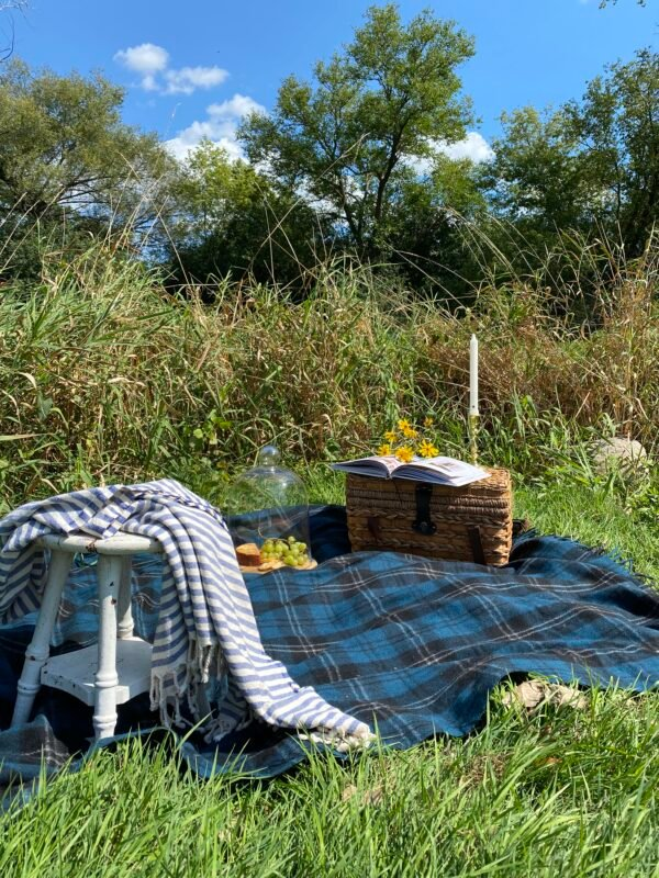 Black and Blue Plaid Blanket in a field with a picnic basket, snacks, a book and a throw.  Everything you need for a fun fall picnic